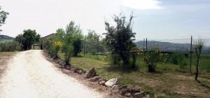 04_Strada_di_ingresso_con_laghetto